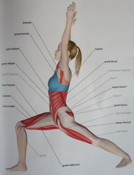 posture guerrier